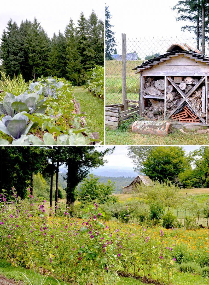 Beauty-garden-jardin-Auriac