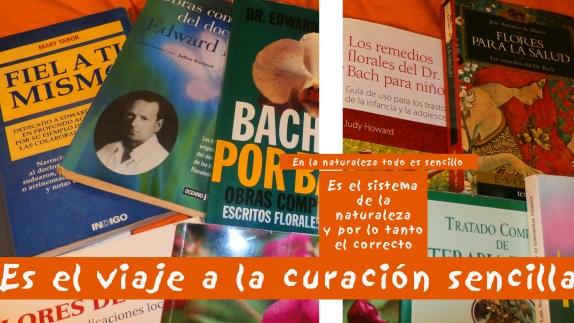 Libros del Dr Edward Bach