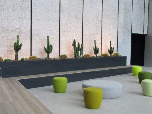 Jardinería y Paisajismo con cactus y crasas por Pepe Plana