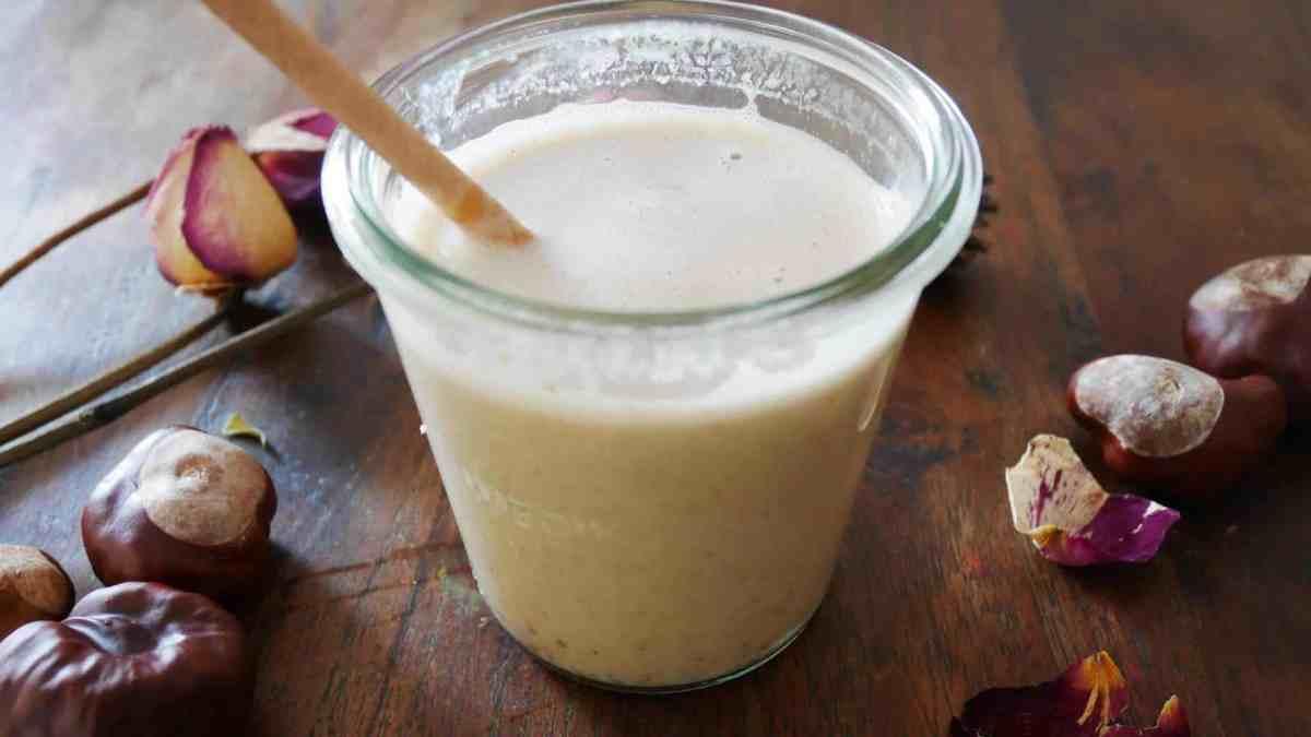 Smoothie végétal : Recette à base de boisson d'avoine et dattes