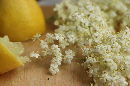 Cake aux fleurs de sureau, citron et pavot - Cuisine de Deborah