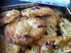 Cookies chocolat blanc boite