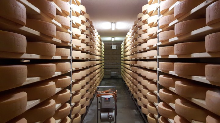 Pont-de-Martel cheese shelves