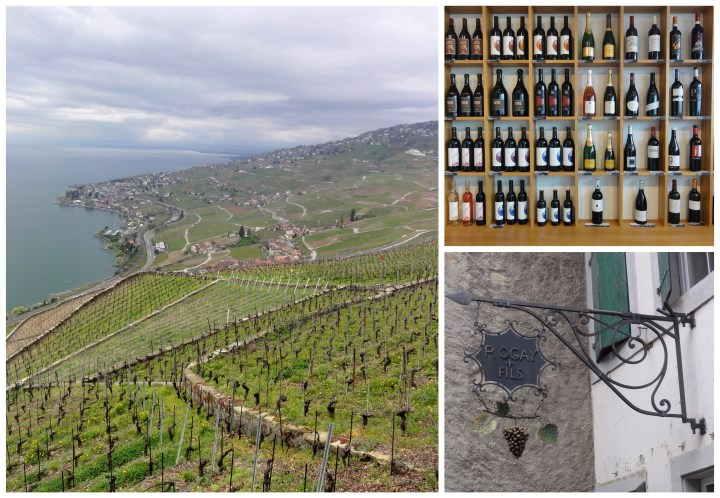 20150419 Newly Swissed DRAFT - Lavaux Wine Route_html_m6128cd18