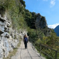 Walking the Olive Path in Lugano (Ticino)