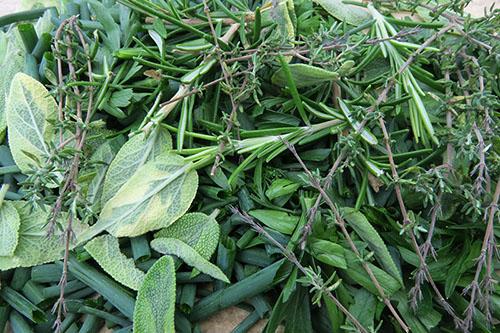 Herbes aromatiques du jardin