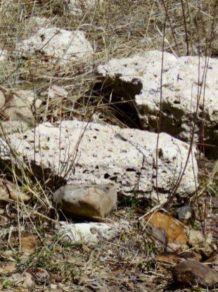 Cañada de la Virgen–Lava Rocks