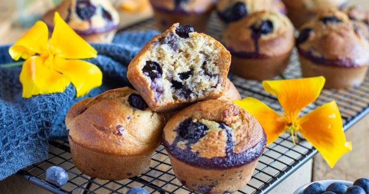 Muffins aux myrtilles et à la vanille (sans beurre, sans huile)