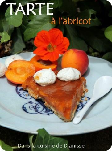 Recette végane sans gluten : tarte à l'abricot