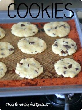 Cookies vegan avant cuisson
