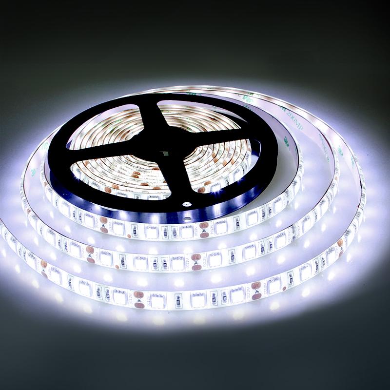 Led Camera Light