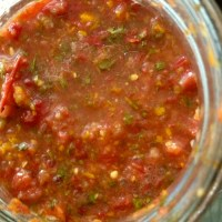 fermented salsa party