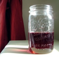 my staples: summer blueberry liqueur