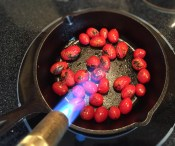 Blackening Cherry Tomatoes   Culinary Compost