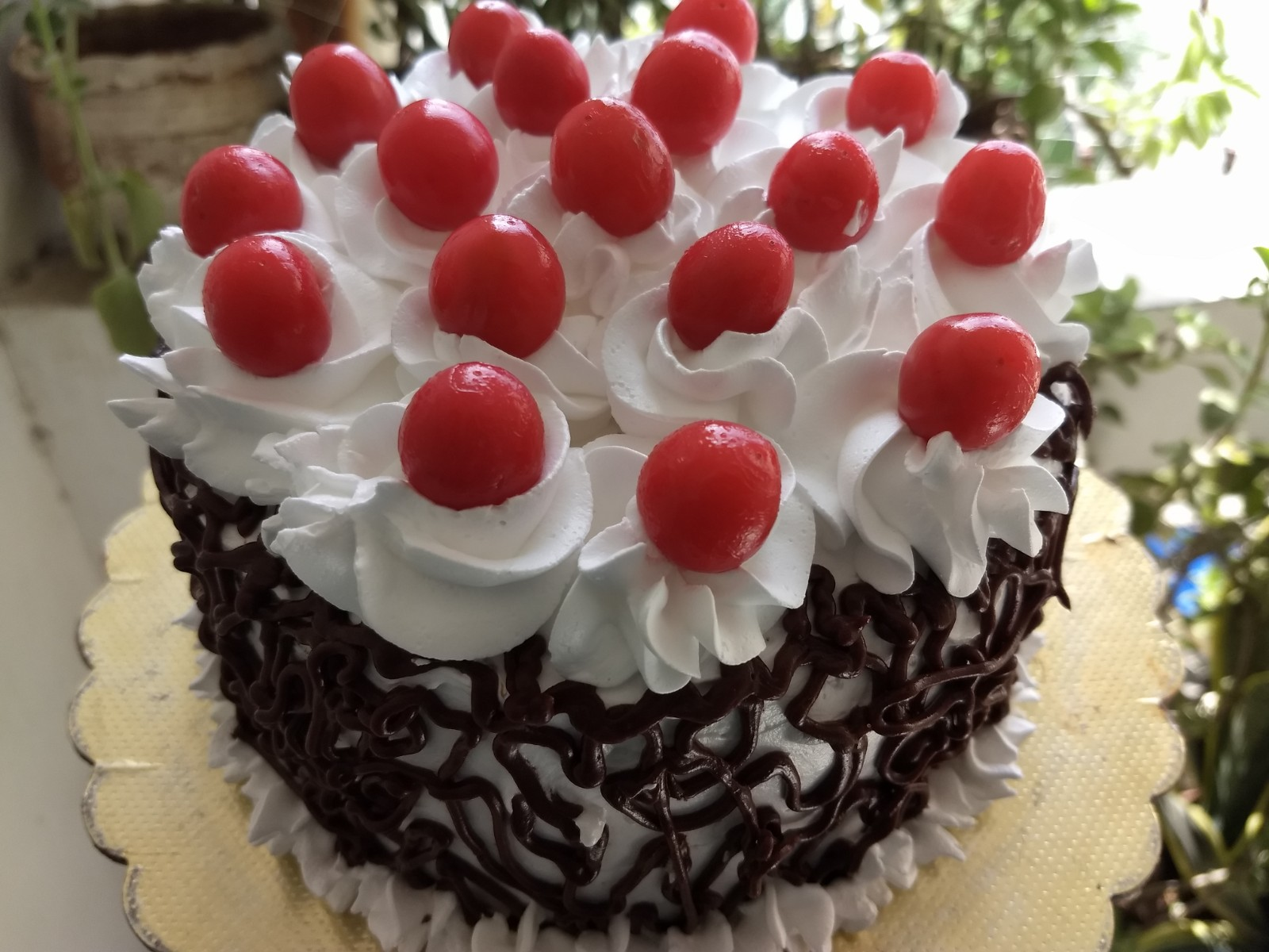 Eggless Black Forest Cake Culinary Labs