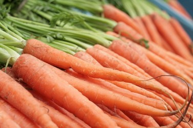 large bunch of carrots