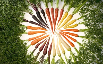many colors of carrots