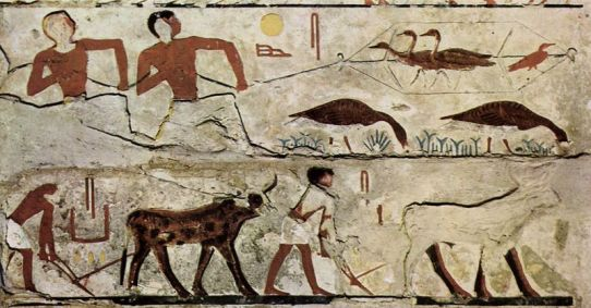 Egyptian painting of hunting birds and plowing fields