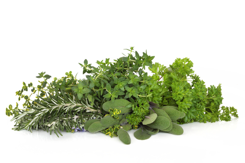 parsley sage roesmary and thyme herbs isolated