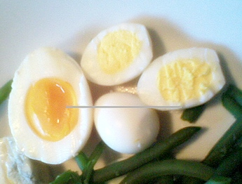 photo comparing size of quail eggs to chicken eggs, Sliced in half to show yolk sizes