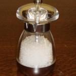 salt grinder or salt mill