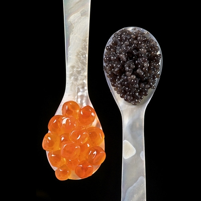 Sturgeon and Salmon roe