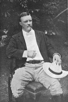 Teddy Roosevelt at home