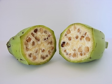 wild variety of banana fruit cut in half to show inside