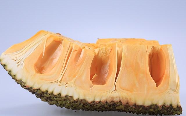slice of jackfruit