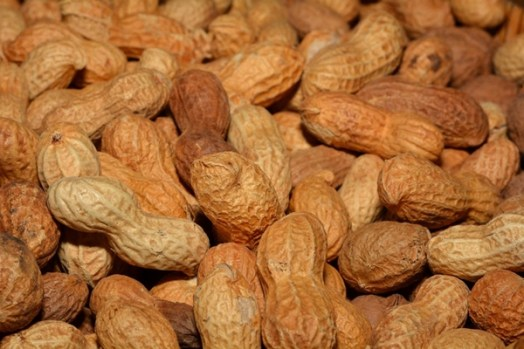 roasted peanuts in the shell