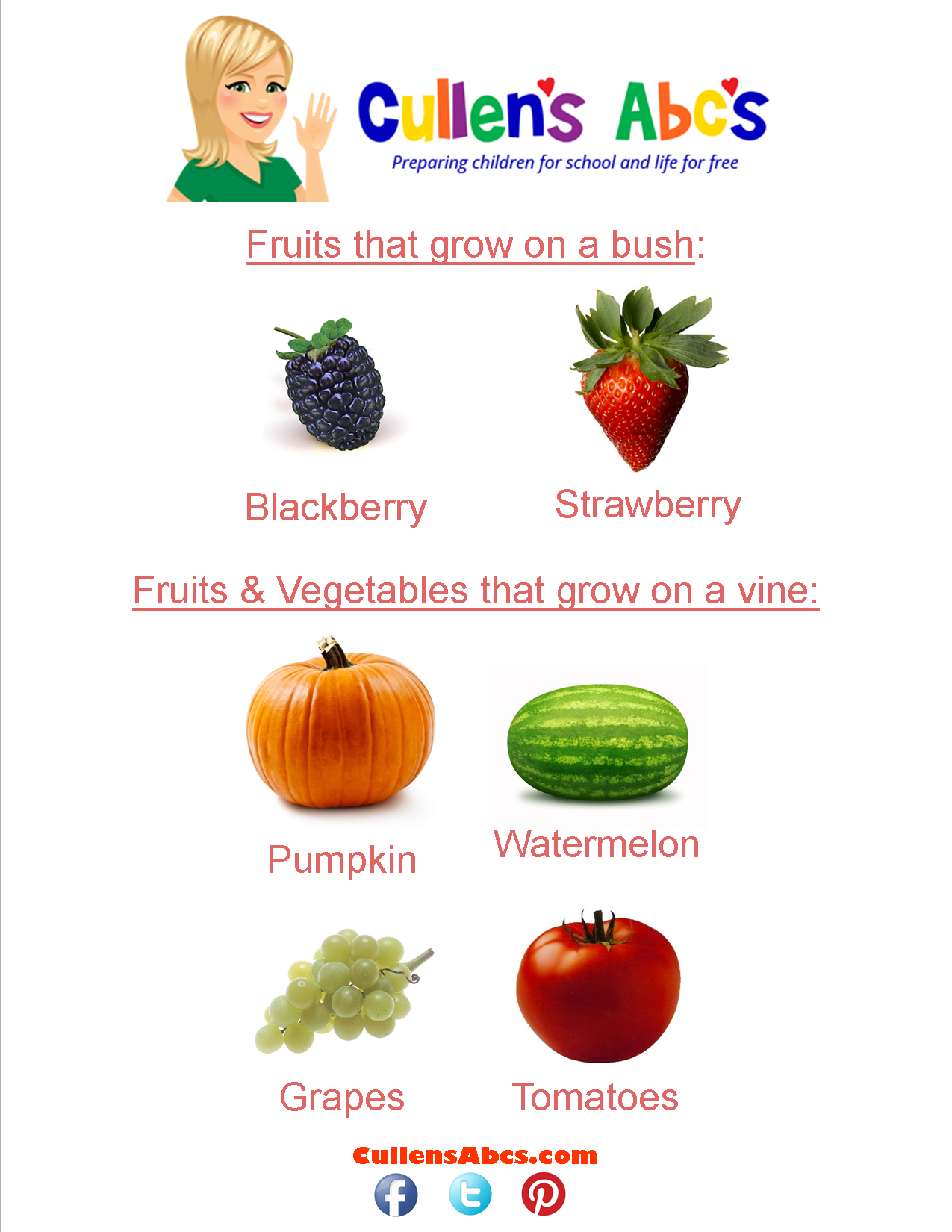 Crops Where Fruits Amp Vegetables Grow