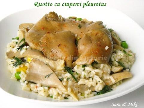 Risotto-cu-ciuperci-pleurotus-2