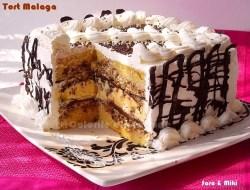 Tort-Malaga-4-1