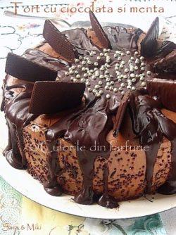 Tort-cu-ciocolata-si-menta-1