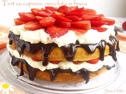 Tort cu capsuni, ciocolata si frisca 4-1