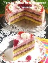 Tort-cu-crema-de-mascarpone-si-zmeura1