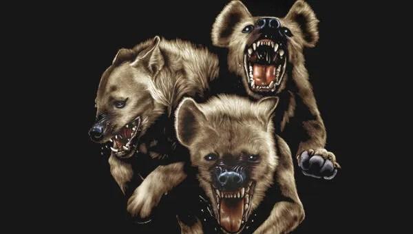 the hundreds hyena tshirt