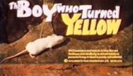 the-boy-who-turned-yellow-1