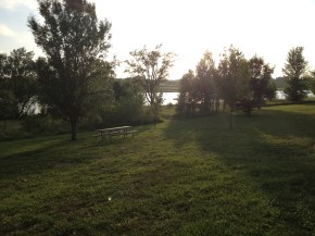 Picture 012