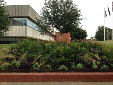 Cultivate-London-Landscaping-Hounslow-Civic-Centre_1000