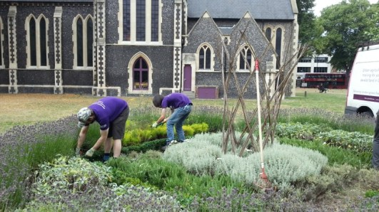 Cultivate-London-Landscaping14