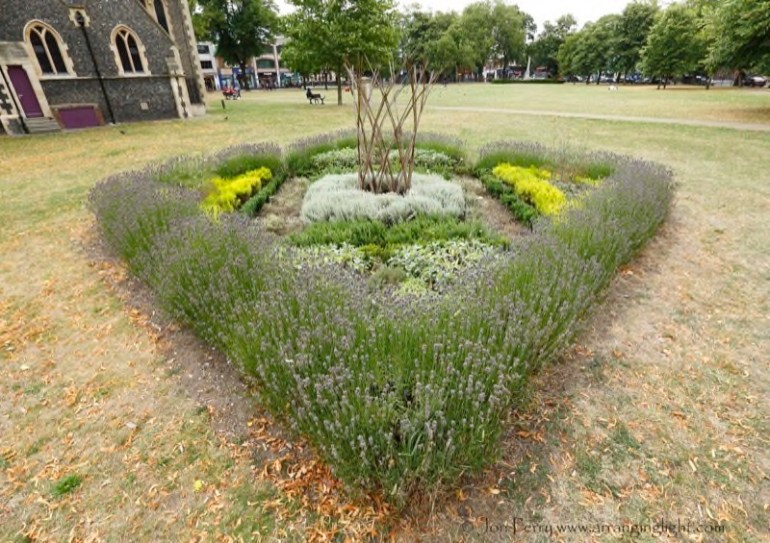 Cultivate-London-Landscaping5
