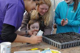 Cultivate London Urban Farm and Social Enterprise 30
