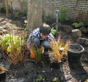 Michael-Parry-Landscape-Gardening-Apprentice