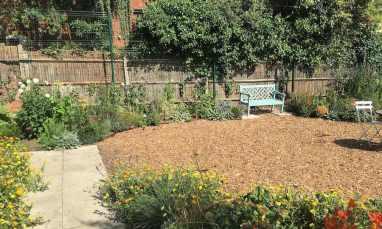 Summer-Internships-at-Cultivate-London