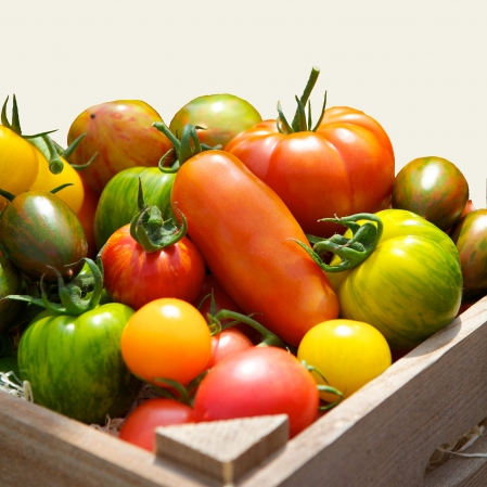 Meet our New Supplier – The Tomato Stall