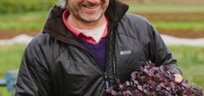 Meet the Producer : Pete Richardson – Westmill Organics