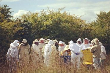 Interview with a Producer: Warborough Honey