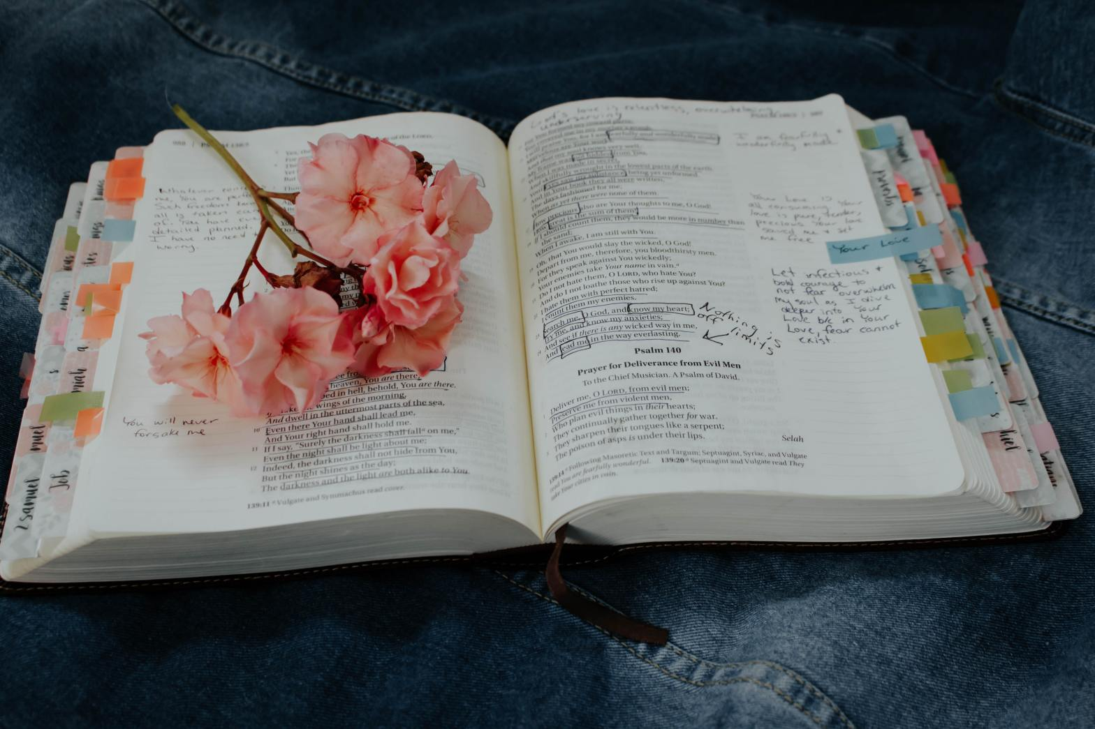 bible study tools for modern women