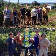 Work party to build fence
